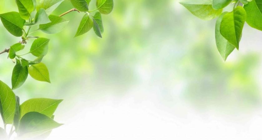 Pengaruh udara dingin terhadap kesehatan